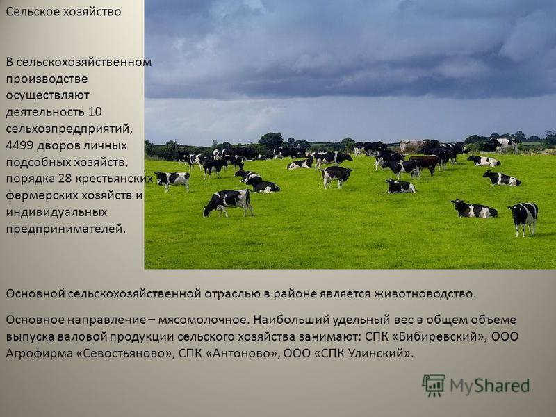 Сельское хозяйство В сельскохозяйственном производстве осуществляют деятельность 10 сельхозпредприятий, 4499 дворов личных подсобных хозяйств, порядка 28 крестьянских фермерских хозяйств и индивидуальных предпринимателей. Основной сельскохозяйственно