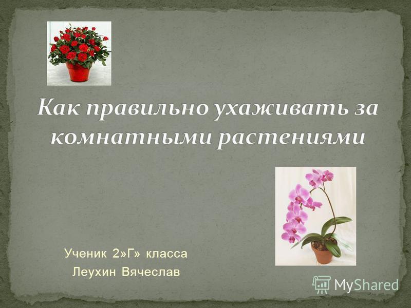Ученик 2»Г» класса Леухин Вячеслав