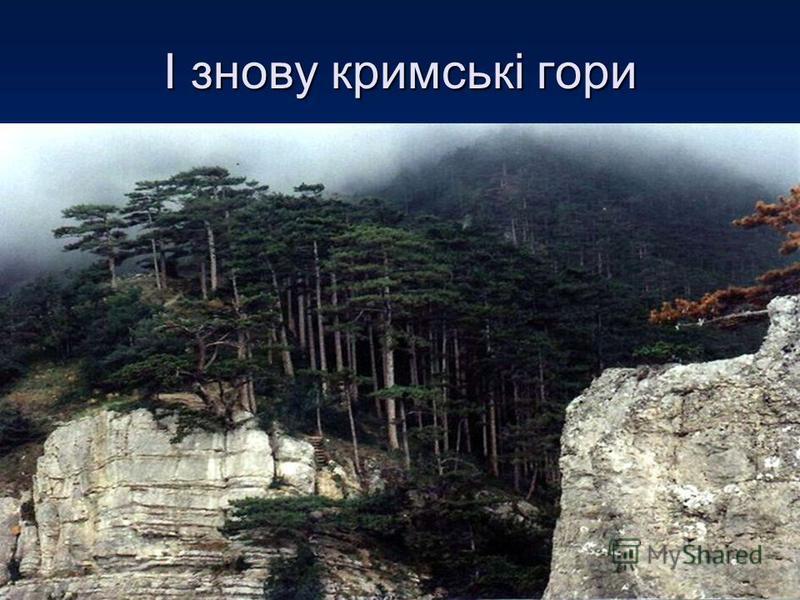 І знову кримські гори