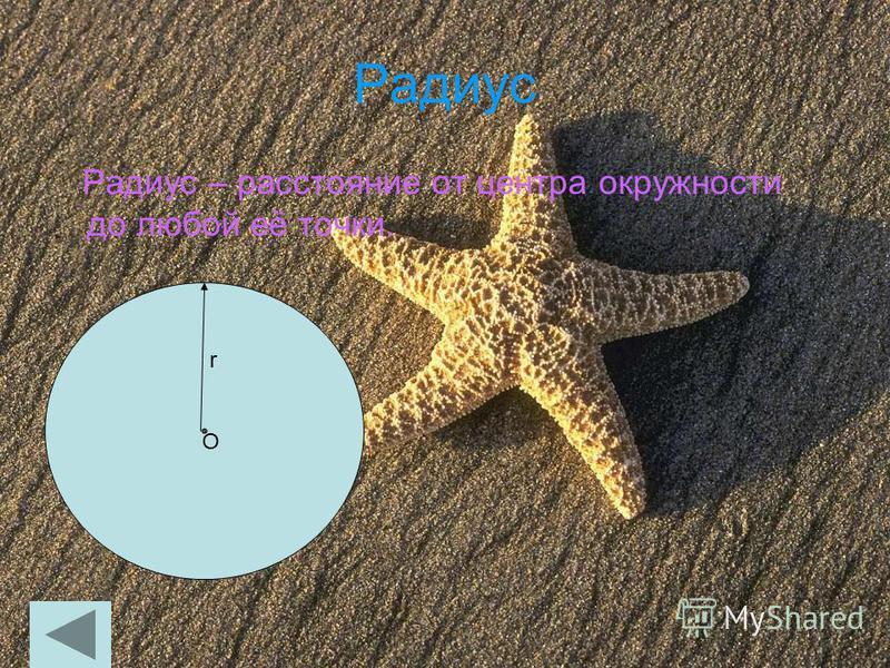 Радиус Радиус – расстояние от центра окружности до любой её точки. О r r О