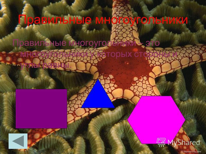 Правильные многоугольники Правильные многоугольники – это многоугольники у которых стороны и углы равны.