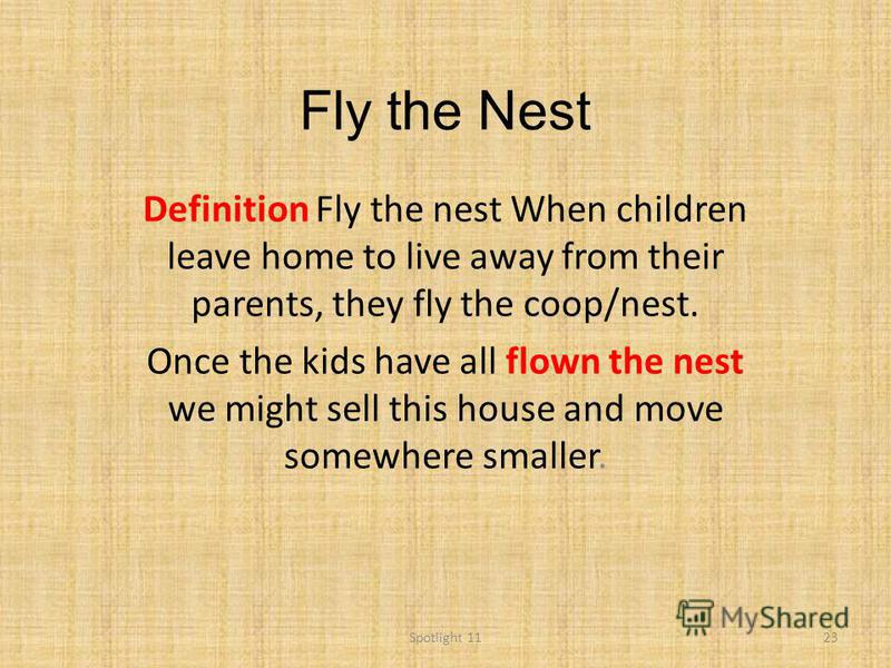 Fly the Nest Definition Fly the nest When children leave home to live away from their parents, they fly the coop/nest. Once the kids have all flown the nest we might sell this house and move somewhere smaller. 23Spotlight 11
