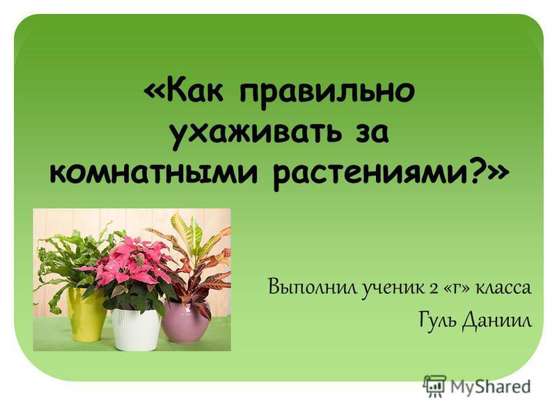 «Как правильно ухаживать за комнатными растениями?» Выполнил ученик 2 «г» класса Гуль Даниил