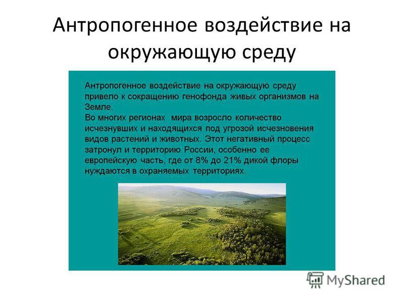 Антропогенное воздействие на окружающую среду