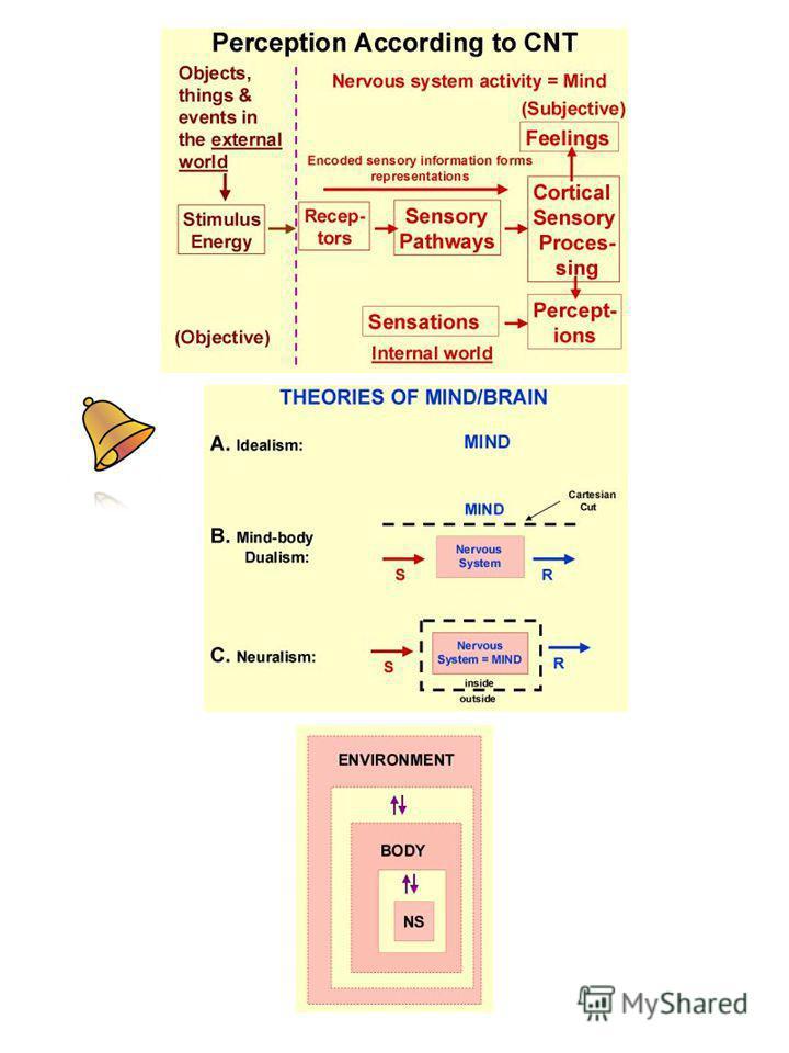 Оценка обобщение идея теория Оценка оценки Оценка идеи Обобщение идеи Оценка обобщения Обобщение оценки Обобщение обобщения