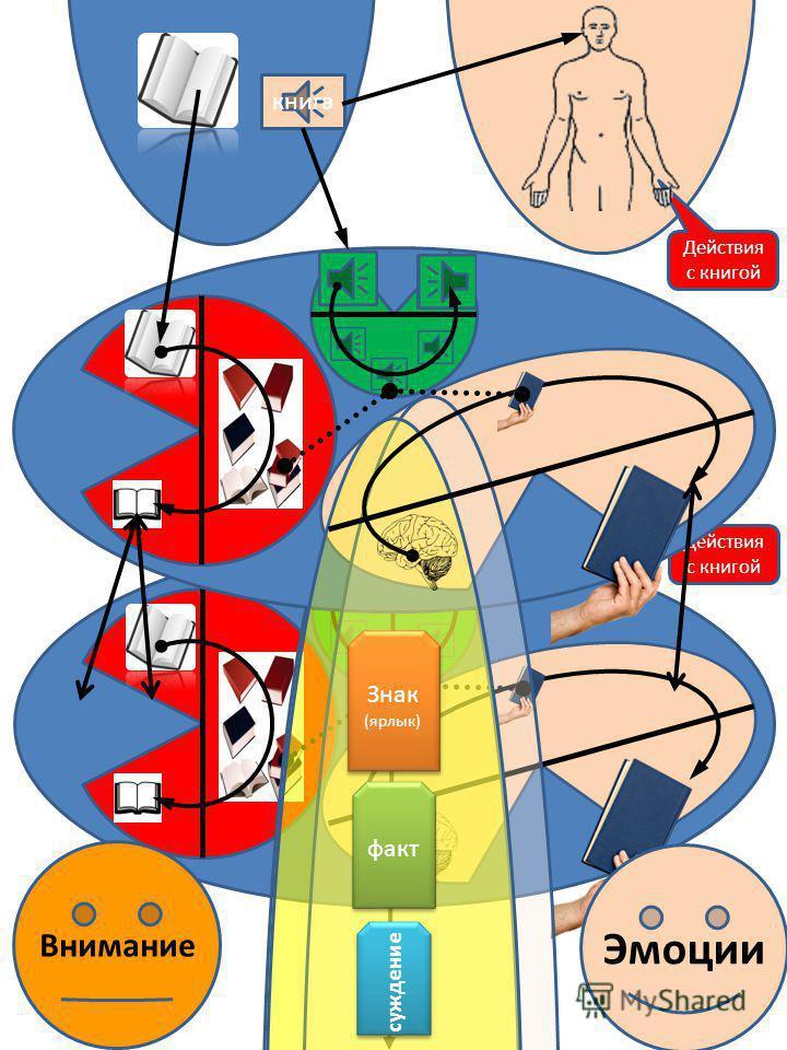 Внимание Эмоции Память действий Навык Намерение Восприятие Сигнал Осознание Ощущение Образ Визуальная память Команда Действия с объектом Действие с книгой Осознание Ощущение Образ Восприятие Сигнал Слуховая память реальность тело
