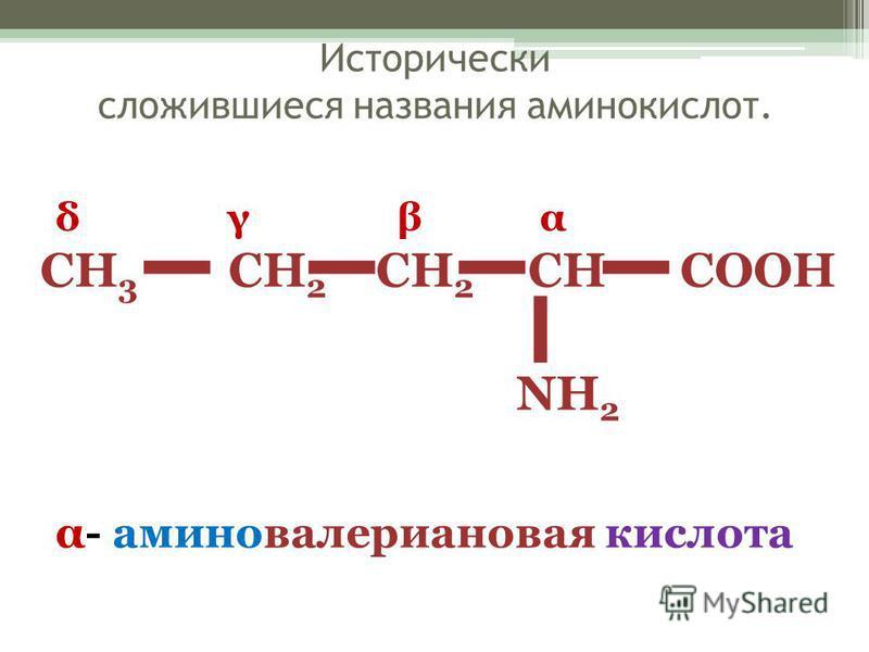 Исторически сложившиеся названия аминокислот. CH 3 CH 2 CH 2 CH COOH NH 2 δ γ β α α- аминовалериановая кислота