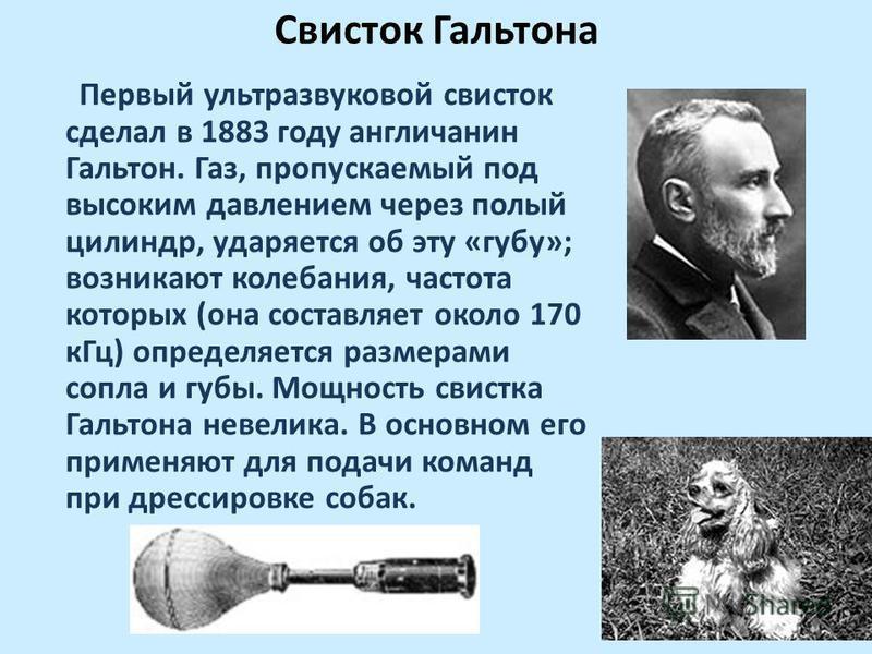 Свисток Гальтона Первый ультразвуковой свисток сделал в 1883 году англичанин Гальтон. Газ, пропускаемый под высоким давлением через полый цилиндр, ударяется об эту «губу»; возникают колебания, частота которых (она составляет около 170 к Гц) определяе