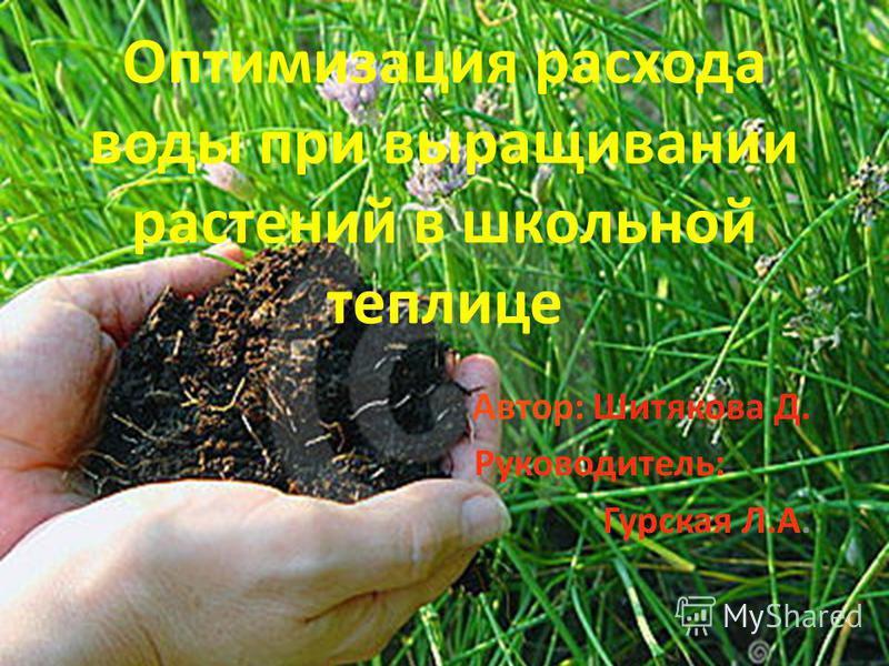 Оптимизация расхода воды при выращивании растений в школьной теплице Автор: Шитякова Д. Руководитель: Гурская Л.А.