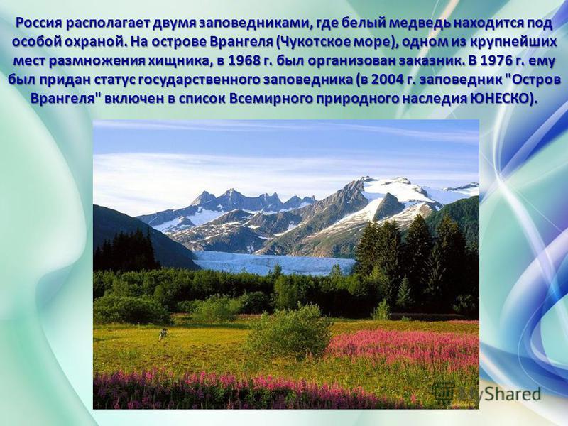 Россия располагает двумя заповедниками, где белый медведь находится под особой охраной. На острове Врангеля (Чукотское море), одном из крупнейших мест размножения хищника, в 1968 г. был организован заказник. В 1976 г. ему был придан статус государств