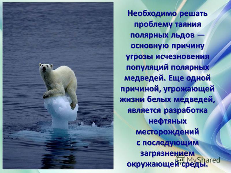 Необходимо решать проблему таяния полярных льдов основную причину угрозы исчезновения популяций полярных медведей. Еще одной причиной, угрожающей жизни белых медведей, является разработка нефтяных месторождений с последующим загрязнением окружающей с