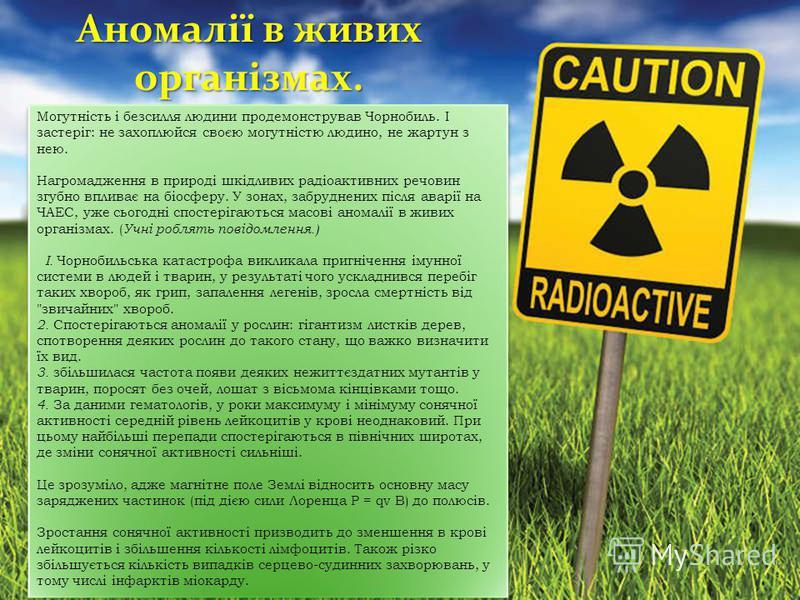 Аномалії в живих організмах. Могутність і безсилля людини продемонстрував Чорнобиль. І застеріг: не захоплюйся своєю могутністю людино, не жартун з нею. Нагромадження в природі шкідливих радіоактивних речовин згубно впливає на біосферу. У зонах, забр
