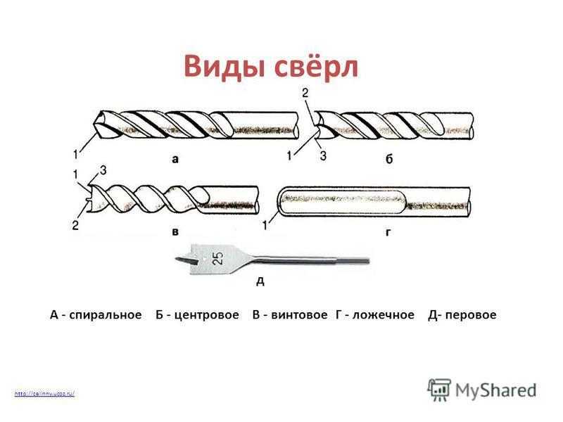 Виды свёрл д А - спиральноеБ - центровоеВ - винтовоеГ - ложечноеД- перовое http://celinny.ucoz.ru/