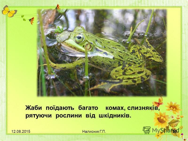 Жаби поїдають багато комах, слизняків, рятуючи рослини від шкідників. 12.08.201526Налисник Г.П.