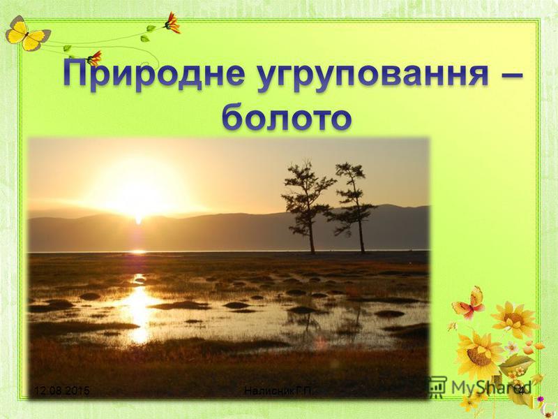 12.08.20154Налисник Г.П.
