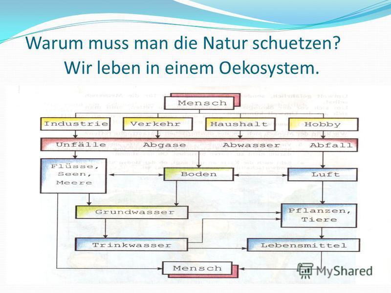 Warum muss man die Natur schuetzen? Wir leben in einem Oekosystem.