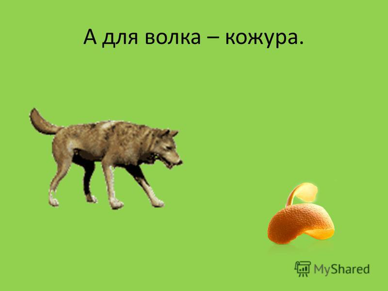 А для волка – кожура.