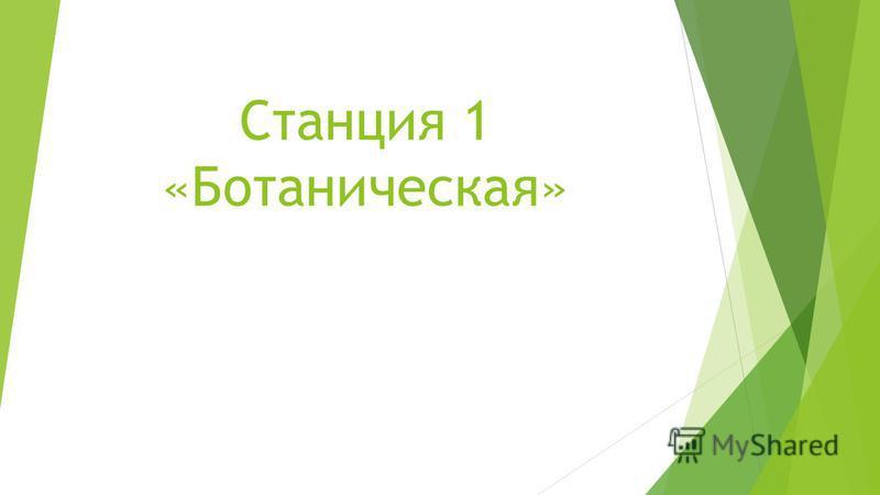 Станция 1 «Ботаническая»
