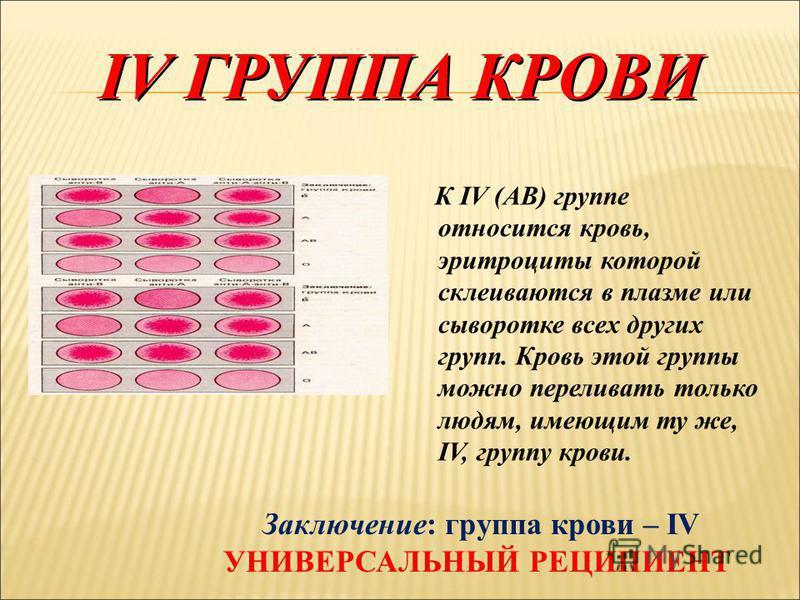 III ГРУППА КРОВИ К III (В) группе относится кровь, эритроциты которой склеиваются и разрушаются в плазме или сыворотке крови I и II групп, но совместимы с эритроцитами III и IV групп. Кровь этой группы можно переливать людям с кровью III и IV групп.