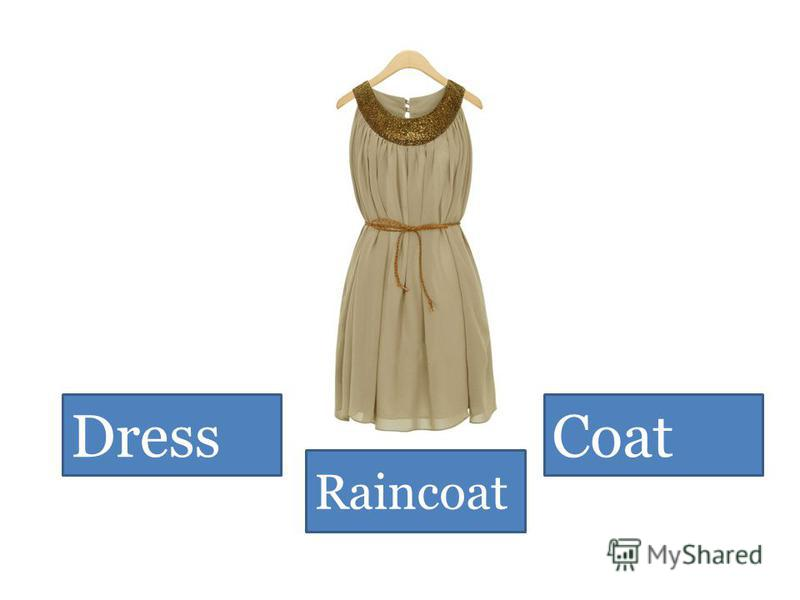 Dress Raincoat Coat