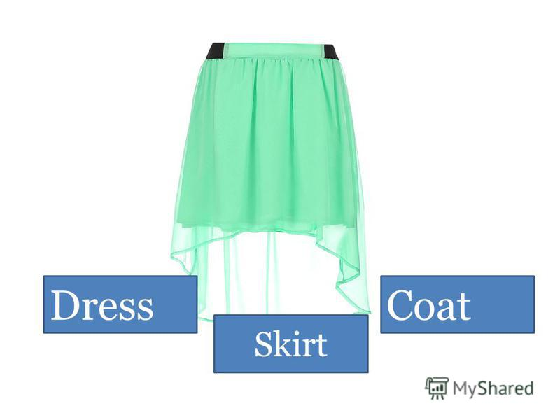 Dress Skirt Coat