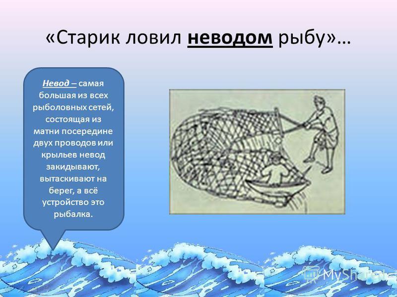 «Старик ловил неводом рыбу»… Невод – самая большая из всех рыболовных сетей, состоящая из матки посередине двух проводов или крыльев невод закидывают, вытаскивают на берег, а всё устройство это рыбалка.