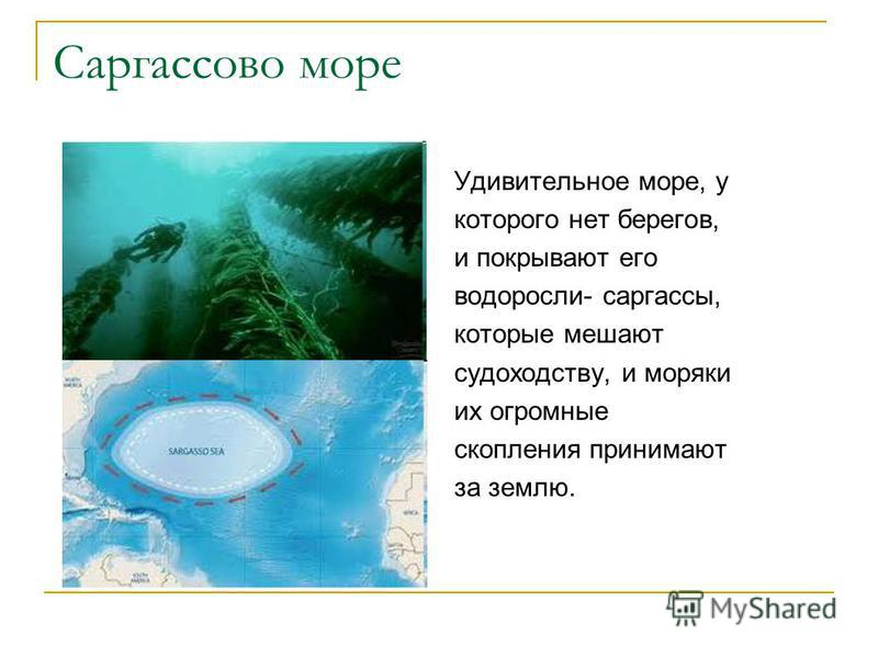 Саргассово море Удивительное море, у которого нет берегов, и покрывают его водоросли- саргассы, которые мешают судоходству, и моряки их огромные скопления принимают за землю.