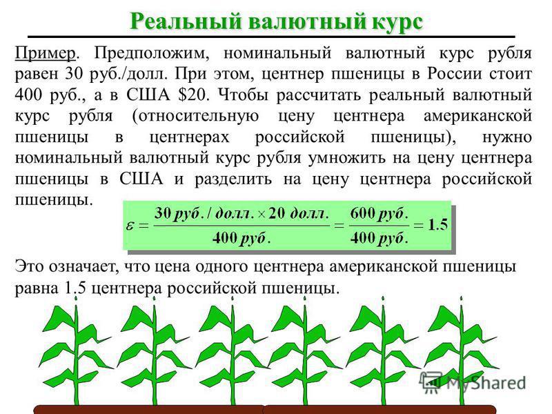 Пример. Предположим, номинальный валютный курс рубля равен 30 руб./долл. При этом, центнер пшеницы в России стоит 400 руб., а в США $20. Чтобы рассчитать реальный валютный курс рубля (относительную цену центнера американской пшеницы в центнерах росси