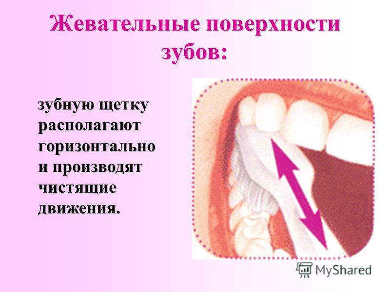 Жевательные поверхности зубов: зубную щетку располагают горизонтально и производят чистящие движения.