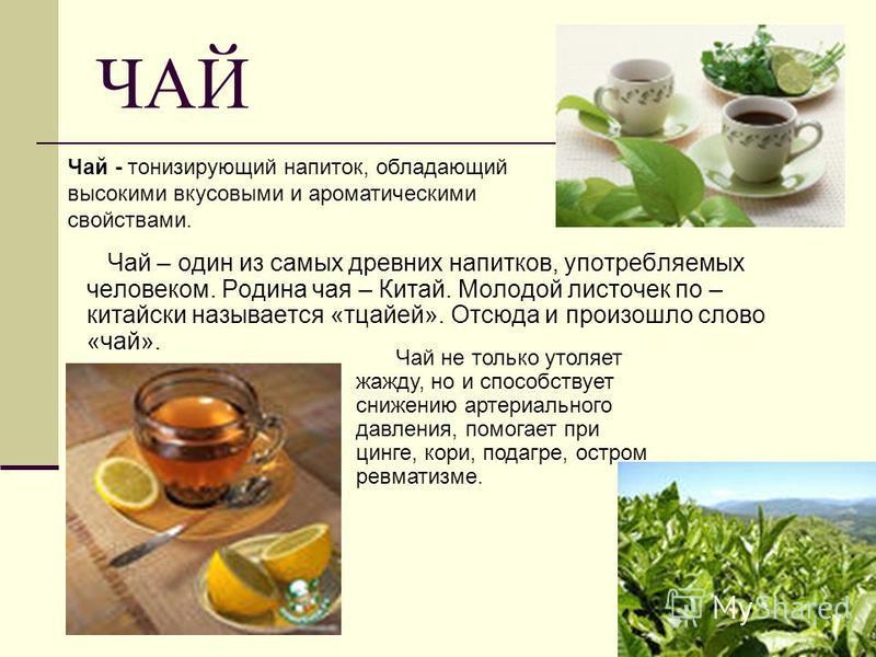 ЧАЙ Чай – один из самых древних напитков, употребляемых человеком. Родина чая – Китай. Молодой листочек по – китайски называется «тцайей». Отсюда и произошло слово «чай». Чай не только утоляет жажду, но и способствует снижению артериального давления,