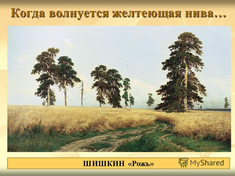 Когда волнуется желтеющая нива… ШИШКИН «Рожь»