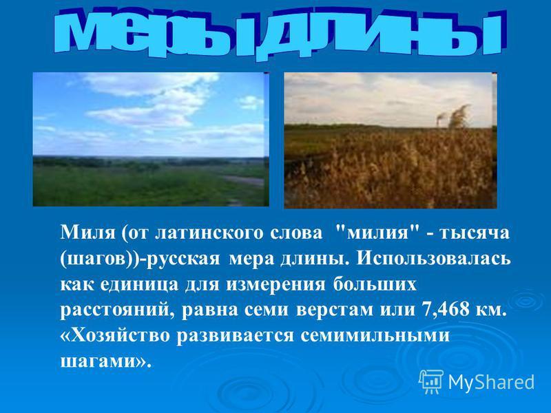Миля (от латинского слова милия - тысяча (шагов))-русская мера длины. Использовалась как единица для измерения больших расстояний, равна семи верстам или 7,468 км. «Хозяйство развивается семимильными шагами».