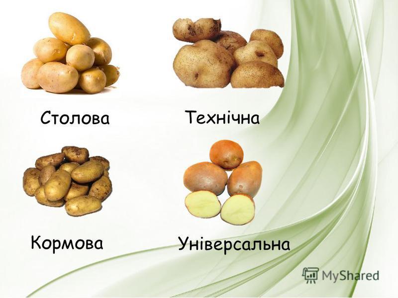 Столова Технічна Кормова Універсальна