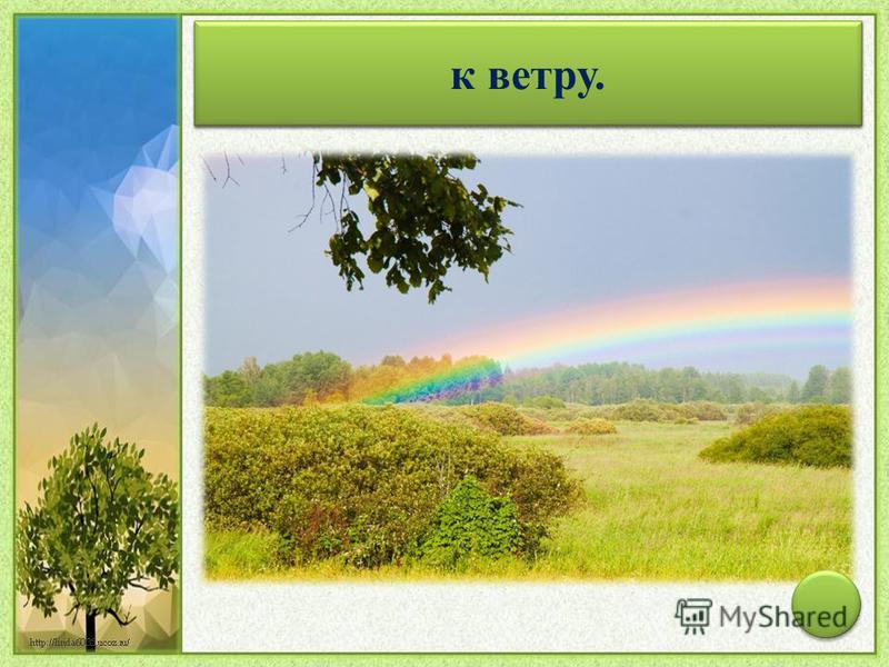В радуге больше красного цвета – к ветру.