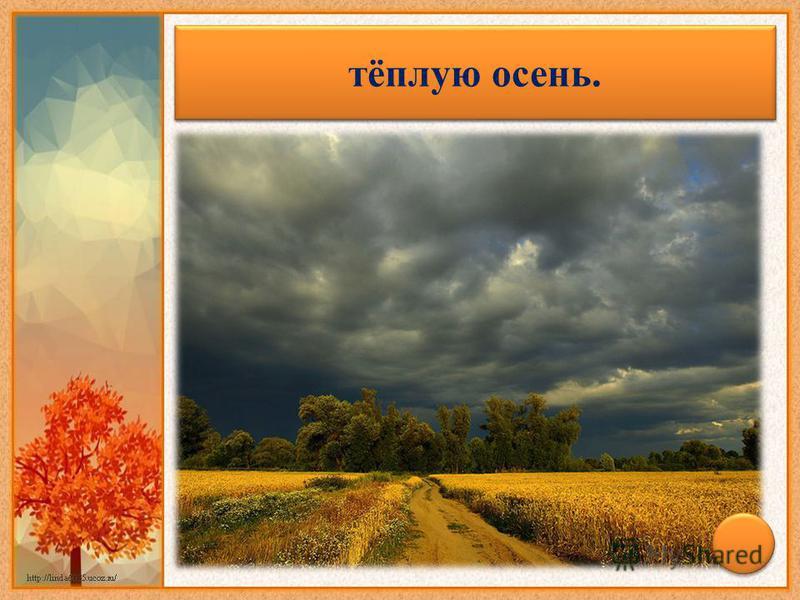 Гром в сентябре предвещает… тёплую осень.