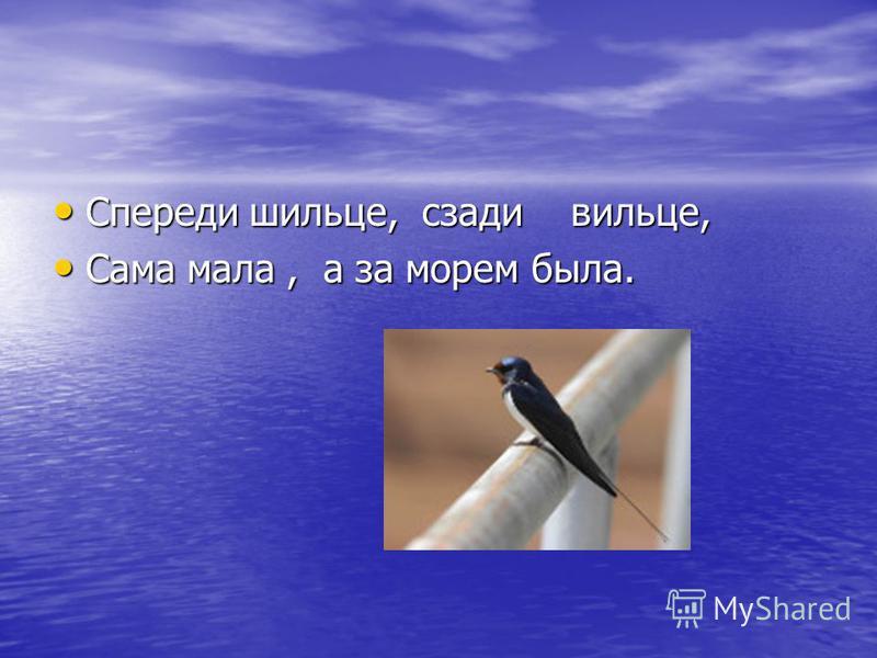 Спереди шильце, сзади вильце, Спереди шильце, сзади вильце, Сама мала, а за морем была. Сама мала, а за морем была.