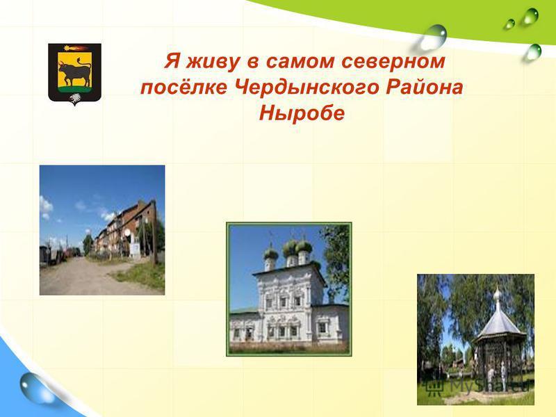 Я живу в самом северном посёлке Чердынского Района Ныробе