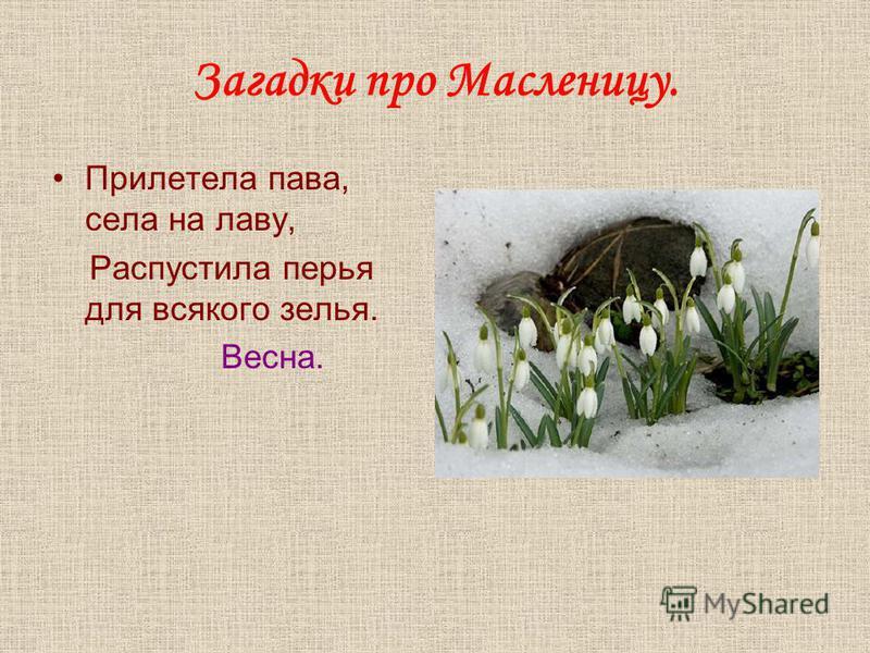 Загадки про Масленицу. Прилетела пава, села на лаву, Распустила перья для всякого зелья. Весна.