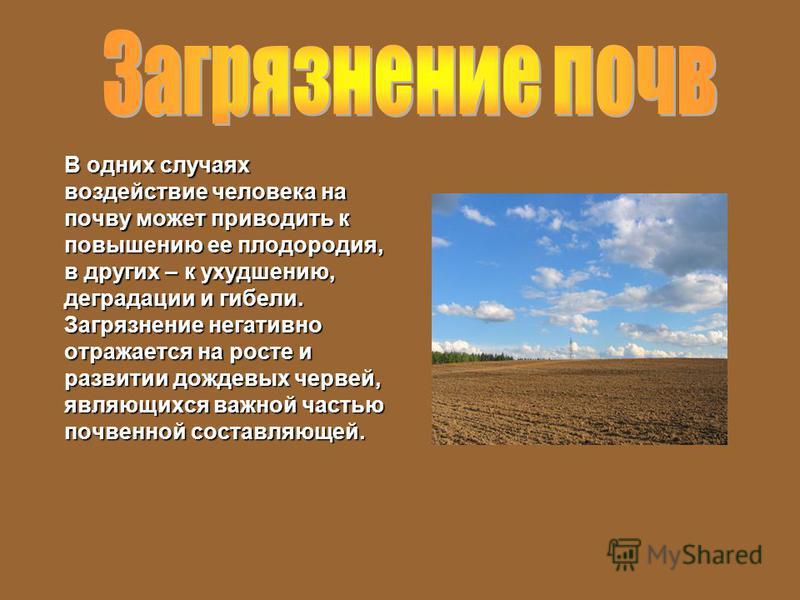 В одних случаях воздействие человека на почву может приводить к повышению ее плодородия, в других – к ухудшению, деградации и гибели. Загрязнение негативно отражается на росте и развитии дождевых червей, являющихся важной частью почвенной составляюще