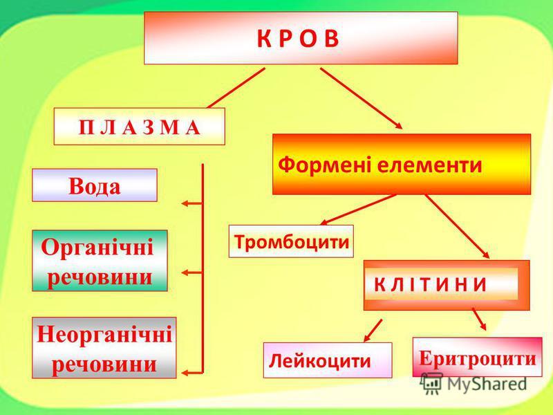 Лейкоцити Тромбоцити К Л І Т И Н И Формені елементи К Р О В