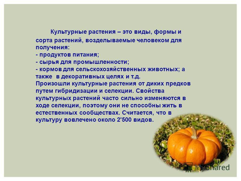 Культурные растения – это виды, формы и сорта растений, возделываемые человеком для получения: - продуктов питания; - сырья для промышленности; - кормов для сельскохозяйственных животных; а также в декоративных целях и т.д. Произошли культурные расте
