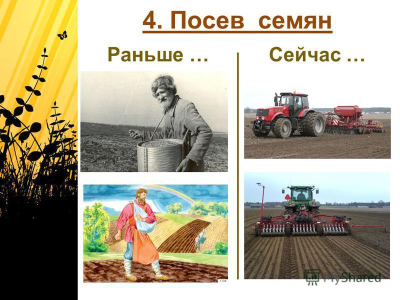 4. Посев семян Раньше …Сейчас …