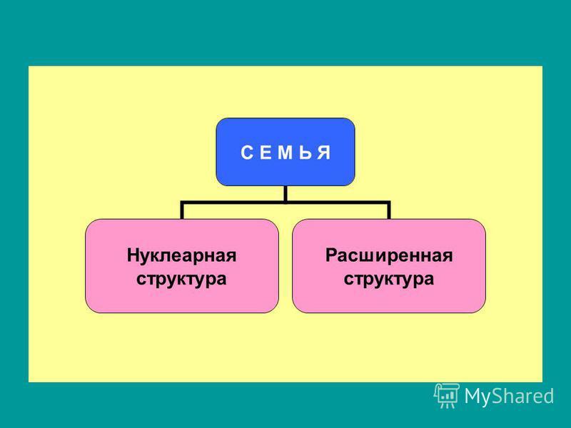 С Е М Ь Я Нуклеарная структура Расширенная структура