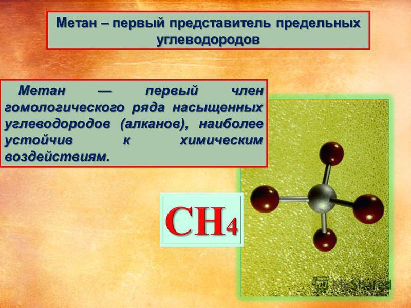Метан – первый представитель предельных углеводородов Метан первый член гомологического ряда насыщенных углеводородов (алканов), наиболее устойчив к химическим воздействиям. Метан первый член гомологического ряда насыщенных углеводородов (алканов), н