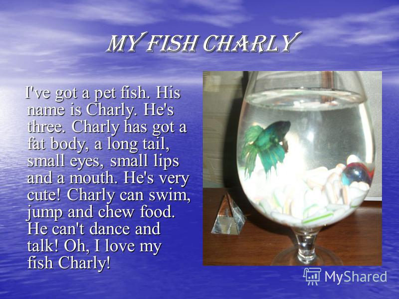 MY FISH CHARLY I've got a pet fish. His name is Charly. He's three. Charly has got a fat body, a long tail, small eyes, small lips and a mouth. He's very cute! Charly can swim, jump and chew food. He can't dance and talk! Oh, I love my fish Charly! I