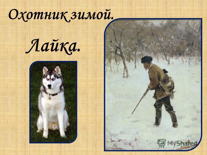 Охотник зимой. Лайка.