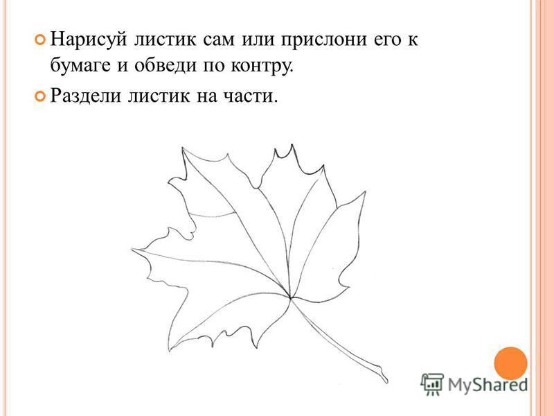 Нарисуй листик сам или прислони его к бумаге и обведи по контру. Раздели листик на части.