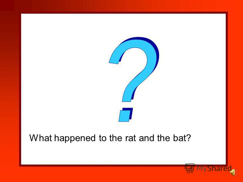 The bat and the fat rat sat on the cat. Who sat on the cat?