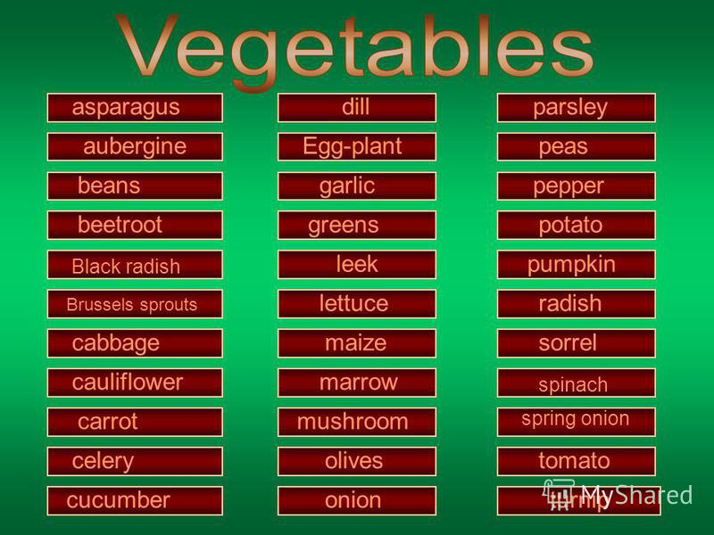 asparagus aubergine beans beetroot Black radish Brussels sprouts cabbage cauliflower carrot celery cucumber dill Egg-plant garlic greens leek lettuce maize marrow mushroom olives onion parsley peas pepper potato pumpkin radish sorrel spinach spring o