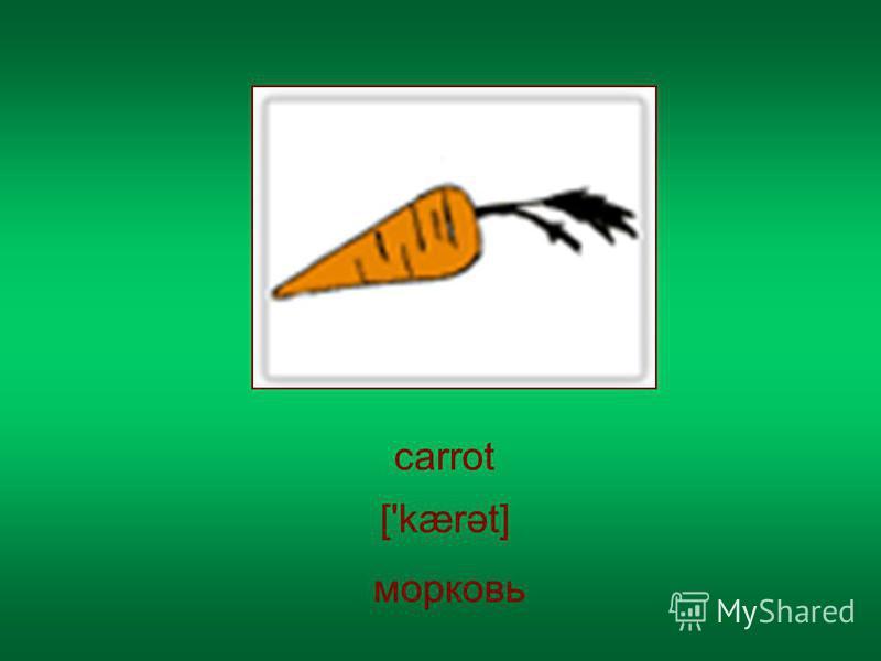 carrot ['kærət] морковь